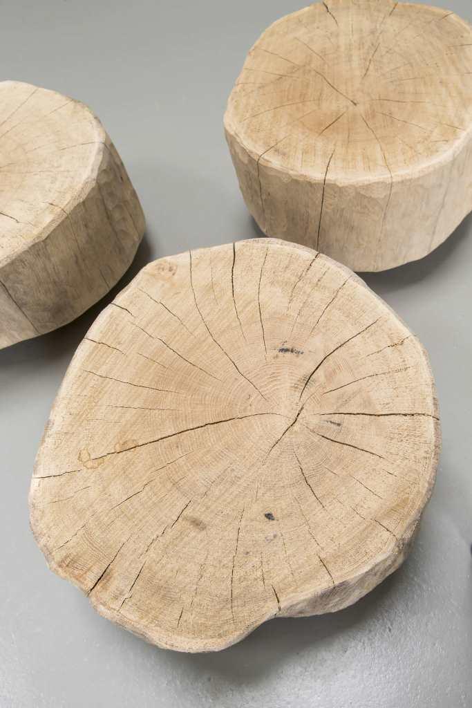 boomstam salontafel tronco